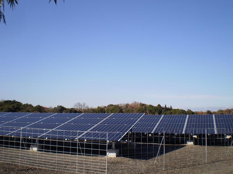 写真:基礎式産業用太陽光設備